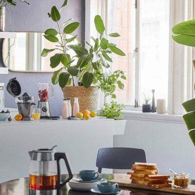 in junge wohnwelt m bel und dekoration zum mitnehmen. Black Bedroom Furniture Sets. Home Design Ideas