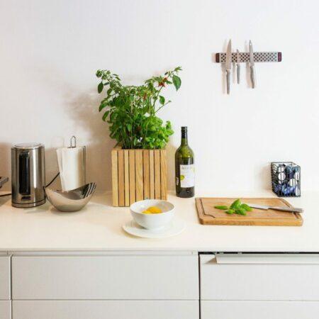 Die grüne Küche: 3 Tipps für Indoor-Gemüse- und Kräuterzucht