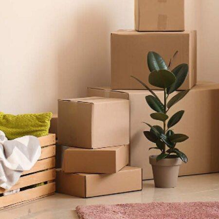 Stressfrei(er) ins neue Zuhause: Tipps zu Umzug, Einrichtung und Renovierung