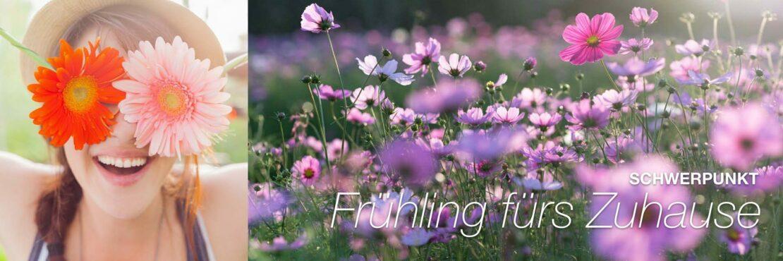 Schwerpunkt: Frühling fürs Zuhause