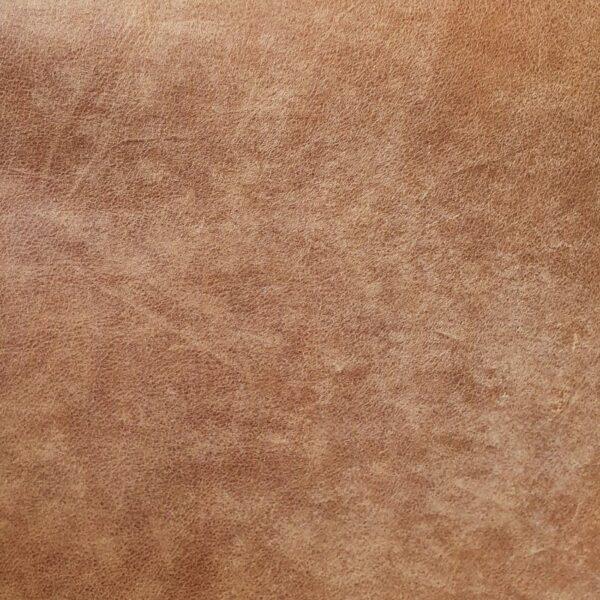 Trendstore Galina Bezug Anilinleder 1410-18 cognac