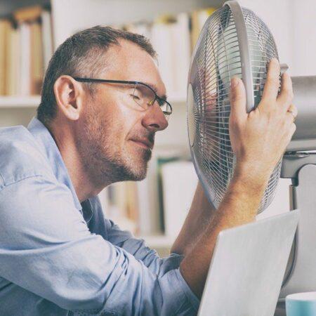 Rollo, Vorhang und Co.: So schützen Sie Ihre Wohnung vor der Sommerhitze