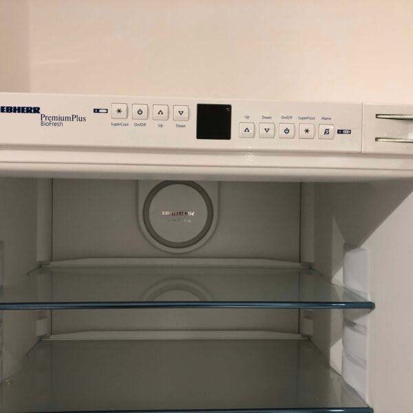 Liebherr ICBP 3166-21 Kühlschrank