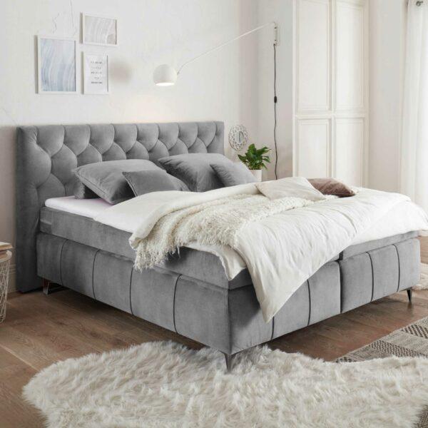 Trendstore Beth Boxspringbett in der Farbe Grau Wohnbeispiel